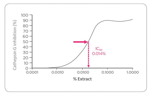 Figure 2. Neat inhibition of cathepsin G activity with increasing concentrations of the extract