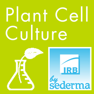 Plant Cell Culture Explained (video)