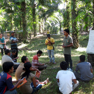 Partnership to Support Palm Oil and Smallholders
